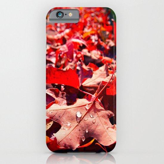 Autumn leaves iPhone & iPod Case