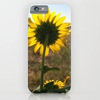Light Through The Sunflo… iPhone 6 Slim Case