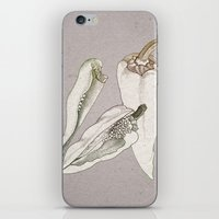 Chillies By Day iPhone & iPod Skin