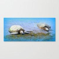 Giant Sea Turtle Canvas Print