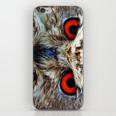 Looking at you iPhone & iPod Skin