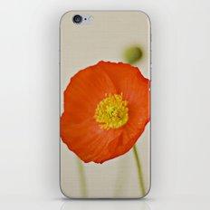 Poppy Flower Red Orange Yellow Bloom iPhone & iPod Skin