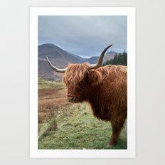 Highlander - II Art Print