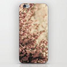 Heather iPhone & iPod Skin