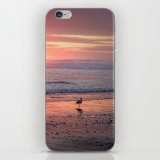 Sunset at Cannon Beach Oregon iPhone & iPod Skin