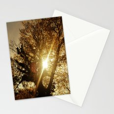 Sunset Behind the Tree Stationery Cards
