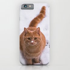 Ginger Kitty Discovers Snow! Slim Case iPhone 6s