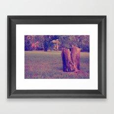 Tree Stump Framed Art Print
