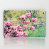 Pink Azalea Bushes Laptop & iPad Skin