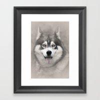 Siberian Husky 2 Framed Art Print