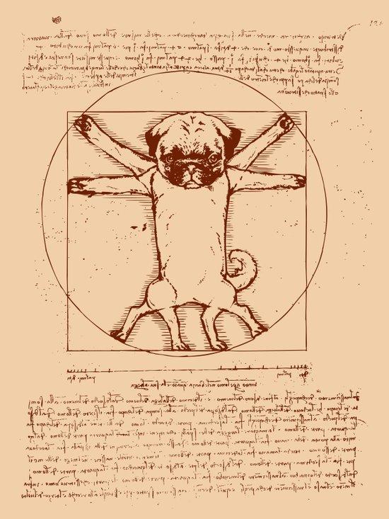 Vitruvian pug Canvas Print