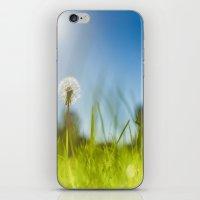 Blue & Green & Dandy iPhone & iPod Skin