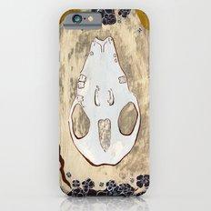 Cycle (Hedgehogs & Flowers) iPhone 6 Slim Case