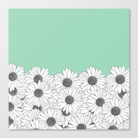Daisy Boarder Mint Canvas Print