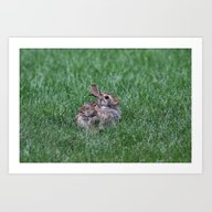 Art Print featuring Happy Bunny by Kealaphotography