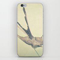 Bird Study #1 iPhone & iPod Skin