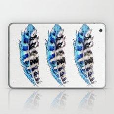 Three Blue Feathers Laptop & iPad Skin