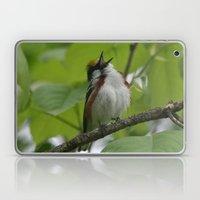 Chestnut-sided Warbler Laptop & iPad Skin