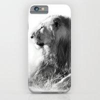Lion in the Sunshine iPhone 6 Slim Case