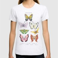 Butterfly Pokémon Of Th… Womens Fitted Tee Ash Grey SMALL