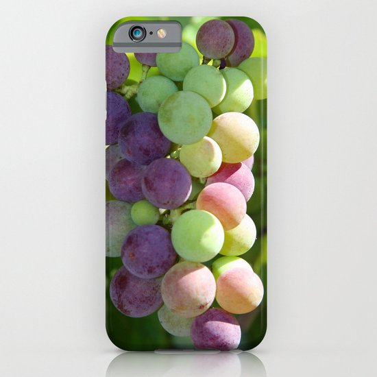 Wine on the Vine iPhone & iPod Case