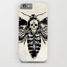 Death's-head Hawkmoth iPhone 6 Slim Case
