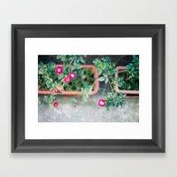 Roadside Flowers Framed Art Print