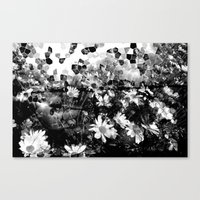 Sunspots 2 Canvas Print