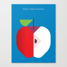 Fruit: Apple Canvas Print