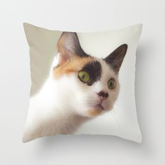 Investigation Mode Throw Pillow