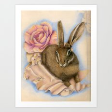 Hare Study Art Print