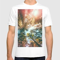 California Redwoods Sun-rays and Sky Mens Fitted Tee White SMALL