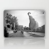 Inquisitive seagull Laptop & iPad Skin