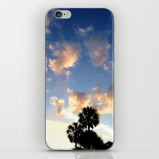 Palm Trees, Ocean Breeze iPhone & iPod Skin