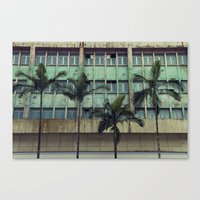 Palms In The City Canvas Print