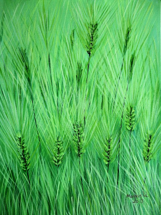 Green wheat Art Print