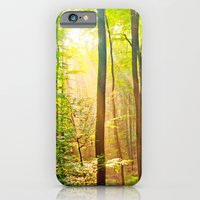 Sunbeams In The Forest iPhone 6 Slim Case