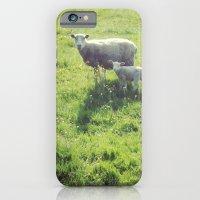 Ohsocute iPhone 6 Slim Case