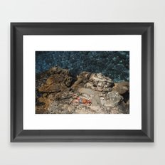 Mel Gibson On Vacation Framed Art Print