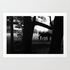 Horses' Silhouette Art Print