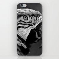 Black & White Parrot  iPhone & iPod Skin