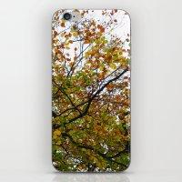 Autumn Patterns #3 iPhone & iPod Skin