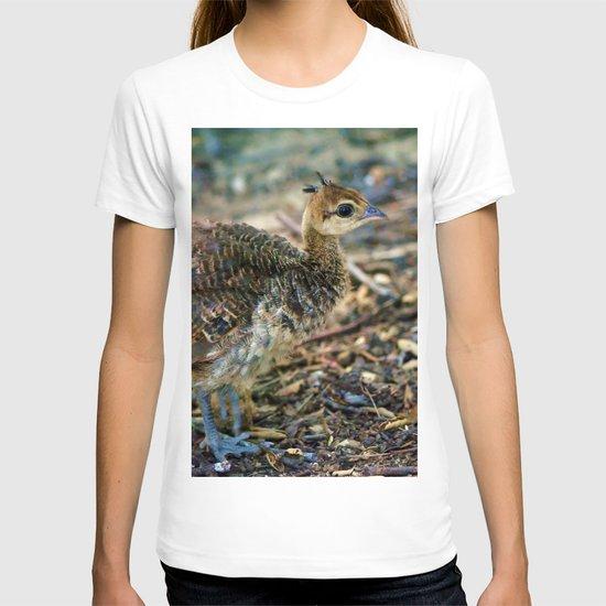 Baby Peacock. © J. Montague. T-shirt