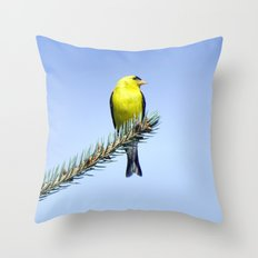 Bird's Eye Blue (American Goldfinch on Blue Spruce) Throw Pillow