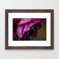 Petals & Raindrops Framed Art Print