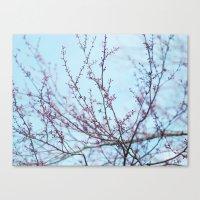 Spring Air Canvas Print
