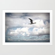 On The Fly Art Print