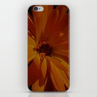 Orange Explosion iPhone & iPod Skin