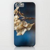 Summer's Ghost II iPhone 6 Slim Case