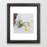 Spring Lost A Bet To Winter Framed Art Print